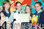 GREENER SCHOOL: Sinead McKenna, Eibhlis Morriarty,.Amy Lyons and Niamh Stack, all fifth class pupils of.the Listowel Girls School and members of the school committee.who were awarded their An Taisce Green Flag.