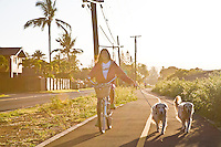 Woman riding a bicycle at sunrise on the bike path with two dogs in Waialua, Oahu, Hawaii