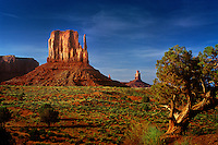 Several buttes or rock towers in Monument Valley National Monument along the Utah and Arizona border.
