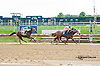Hotspur Harriet winning at Delaware Park on 9/5/13