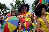 Carnaval 2015 - DF