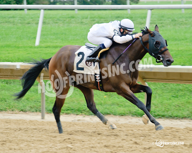 Don't Waste My Time winning at Delaware Park on 9/18/14
