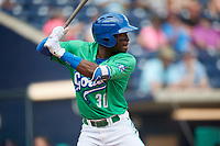 Hartford Yard Goats third baseman Mylz Jones (30) at bat during a game against the Trenton Thunder on August 26, 2018 at Dunkin' Donuts Park in Hartford, Connecticut.  Trenton defeated Hartford 8-3.  (Mike Janes/Four Seam Images)