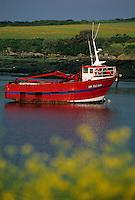 Europe/France/Bretagne/29/Finistère/Lanildut: bateau goemonier -Lanildut est premier port goemonier de France et l'Aber Idult