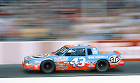 Richard Petty's #43 Pontiac Grand Prix races down the front straightaway during the Southern 500 at Darlington Raceway in Darlington SC on September 1, 1985. (Photo by Brian Cleary/www.bcpix.com)