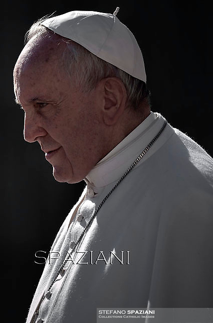 Pope Francis  during his weekly general audience in St. Peter square at the Vatican, Wednesday. February 11, 2015