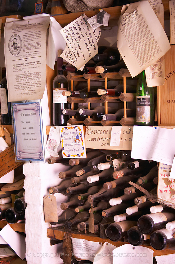 In the tasting room: shelves with other wines from all over the world and various paraphernalia relating to wine. Bodega Pisano Winery, Progreso, Uruguay, South America