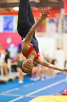 HGA Houston Gymnastics Academy