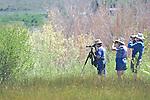 Birders At Mono Lake