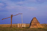 Draw well and reed cottage in puszta , National Park Lake Neusiedl, Burgenland, Austria, April 2007