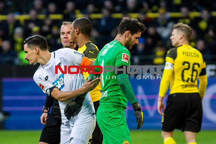 09.02.2019, Signal Iduna Park, Dortmund, GER, 1.FBL, Borussia Dortmund vs TSG 1899 Hoffenheim, DFL REGULATIONS PROHIBIT ANY USE OF PHOTOGRAPHS AS IMAGE SEQUENCES AND/OR QUASI-VIDEO<br /> <br /> im Bild | picture shows:<br /> Benjamin Huebner (Hoffenheim #21) entschuldigt sich bei Roman Buerki (Borussia Dortmund #1) nach dessen unabsichtlichen Foulspiel,  <br /> <br /> Foto &copy; nordphoto / Rauch