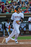 Wisconsin Timber Rattlers shortstop Isan Diaz (6) at bat during a Midwest League game against the Peoria Chiefs on July 9, 2016 at Fox Cities Stadium in Appleton, Wisconsin. Peoria defeated Wisconsin 3-2. (Brad Krause/Four Seam Images)