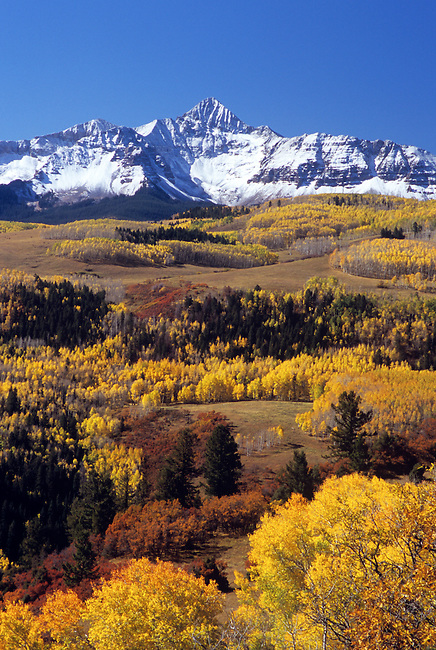 Wilson Peak, Uncompahgre National Forest, Colorado