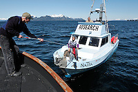 Dan Logan, left, crewman on the M/V Auklet, passes documents to Eva Saulitis on the M/V NaToa, as Craig Matkin looks on from the wheelhouse, in Knight Island Passage, Prince William Sound, Southcentral Alaska, on a sunny spring afternoon in early May. Saulitis and Matkin are marine mammal researchers with the North Gulf Oceanic Society, based in Homer, Alaska. MR for Logan only