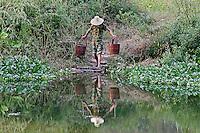 Chinese laborer gathering water, Yulong, River, Guilin, China