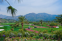 Golf Carts on Winding Cart Path Mountains Blue Sky Flowers