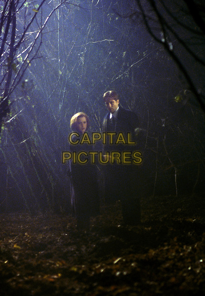 The X-Files (1993 - )<br /> (Season 5, Episode 9, &quot;Schizogeny&quot;)    <br /> Gillian Anderson, David Duchovny<br /> *Filmstill - Editorial Use Only*<br /> CAP/KFS<br /> Image supplied by Capital Pictures