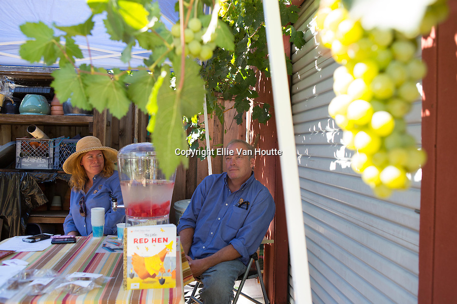 Volunteers offer watermelon water and treats to guests at the Kasso Coop in Los Altos during the 2nd Annual Silicon Valley Tour de Coop.