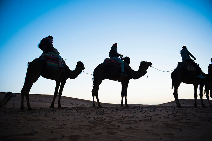 Photo of a tourist silhouetted on a camel ride at night, Erg Chebbi Desert, Sahara Desert near Merzouga, Morocco, North Africa, Africa. This photo of a tourist silhouetted on a camel ride was taken at night in Erg Chebbi desert.