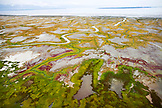 USA, Alaska, Redoubt Bay, wetlands bordering the Gulf of Alaska