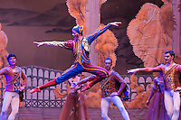 Moscow City Ballet: Swan Lake in Budapest 2014