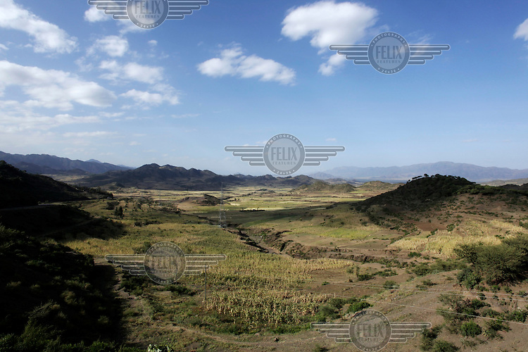 A view over a field of failed crops in a valley in the Kobo region.