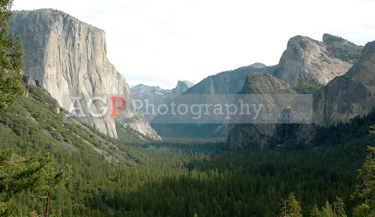 "This is the stunning view of Yosemite Valley from near the tunnell on Wawona Highway in  Yosemite National Park in California November 24, 2008. At left is El Capitan, Half Dome in the center and Bridalvail Falls on the right. El Capitan, left, Half Dome, center, and Bridalveil Falls are seen in this view from near the tunnel on WInona Highway in one of the most famous views of Yosemite Valley in California on November 24, 2008. Yosemite's Tunnel View Overlook, located next to Wawona Road at the east portal of the Wawona Tunnel, was constructed during an era that heralded a boom in design and development throughout the National Park Service, and helped initiate the service's ""rustic"" design style. Because of their exemplary park service rustic design, Wawona Tunnel and Tunnel View are listed on the National Register of Historic Places. The site remains one of the most popular scenic overlooks in Yosemite National Park. Tour buses, tram tours, and single-family vehicles bring as many as 7,000 people to the site each day during the height of the visitor season. (Photo copyright Alan Greth)"