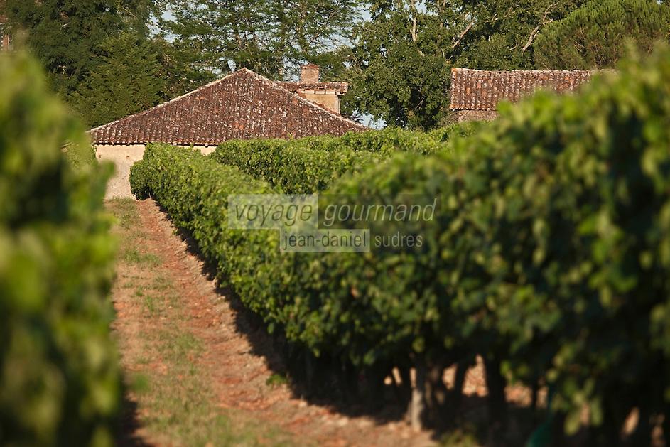 Europe/France/Midi-Pyrénées/32/Gers/Env de Cazaubon: Vignoble d'armagnac et toits d'une ferme