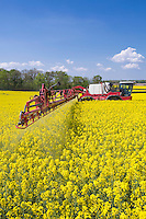 Spraying OSR in flower - Suffolk, May