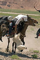 Kirgiz tribesmen in China's Xinjiang region play their most popular game. Known as Buzkashi or Kok-boru or Oglak Tartis or Ulak Tartisch, it is a Central Asian team sport played on horseback between two teams of 6-10 riders. object is to throw a headless goat carcass into the opposing team's goal or into a target circle. It can get extremely rough..