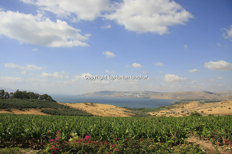 Israel, a view of the Sea of Glilee from the Mount of Beatitudes