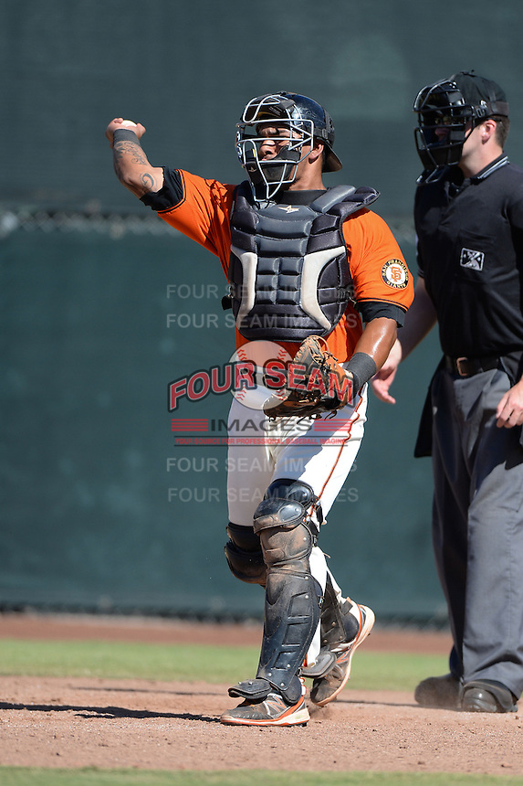 San Francisco Giants catcher Geno Escalante (72) during an instructional league game against the Arizona Diamondbacks on October 3, 2013 at Giants Baseball Complex in Scottsdale, Arizona.  (Mike Janes/Four Seam Images)