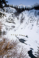 Dave DeCaro runs along Dalzell Creek near open water in the Dalzell Gorge  between Rainy Pass summit and Rohn during 2010 Iditarod, Southcentral Alaska