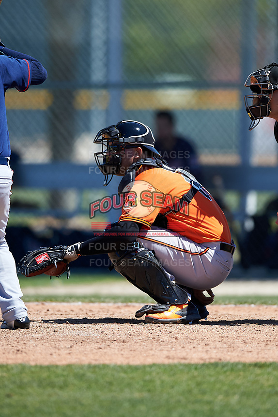 Baltimore Orioles catcher Ronald Soto (61) during a minor league Spring Training game against the Minnesota Twins on March 17, 2017 at the Buck O'Neil Baseball Complex in Sarasota, Florida.  (Mike Janes/Four Seam Images)