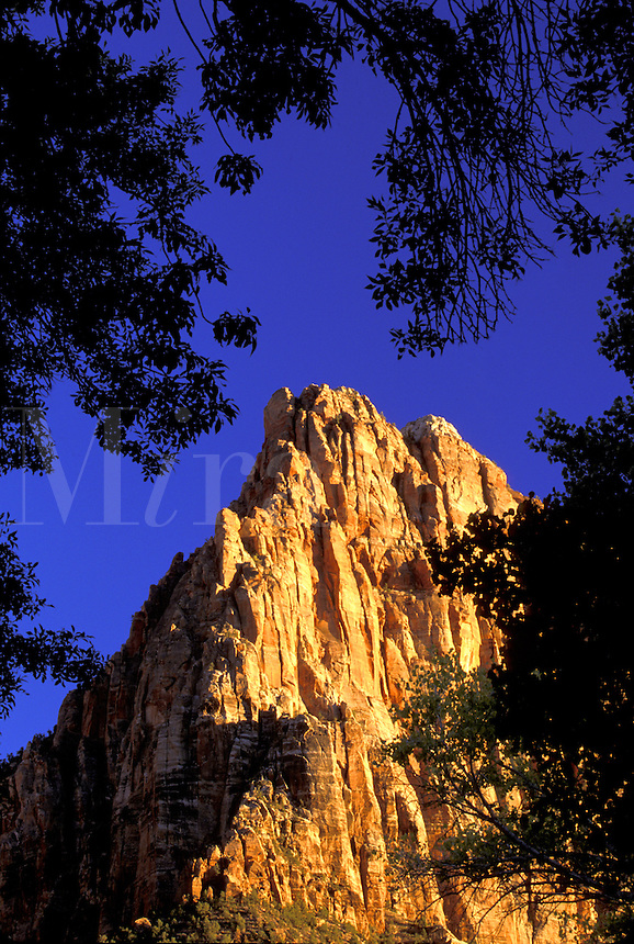 Sunsets on The Watchman.  Zion National Park, Utah.