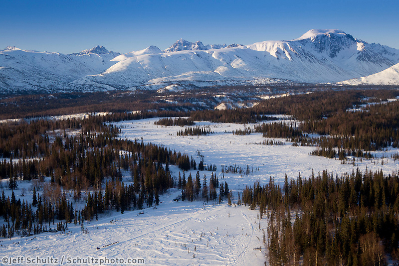 Martin Buser runs down the trail on the way to the Finger Lake checkpoing with the Alaska Range in the background during Iditarod 2011