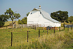 White barn, single side wing, metal cupola; lightning rods on roof in central Nebraska.