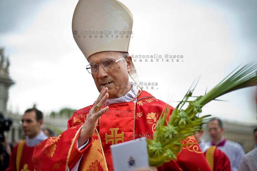 Il Cardinale Tarcisio bertone durante la celebrazione della Domenica delle Palme in Piazza San Pietro.
