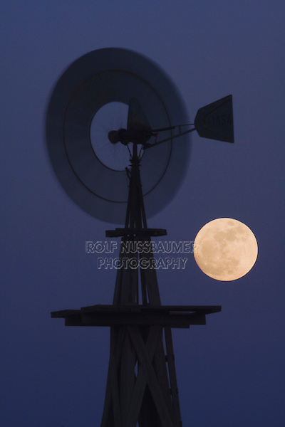 Wind mill at moon rise, Rio Grande Valley, Texas, USA