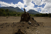 An area of Panabaj, Guatemala on Wednesday, March 21, 2007. A deadly mudslide here was spawned by rains associated with Hurricane Stan in October 2005. Initially, up to 500 Tzujutil Maya villagers were believed to have been killed by the mudslide, which essentially  wiped away the town. The mud covering the area was once at the level seen surrounding the tree. Forensic anthropologists from the Fundación de Antropología Forense de Guatemala have been working to unearth the bodies of the missing and have recovered more than 100. They have also found the number of missing to be lower than originally thought, after many people were located in shelters or living in other towns after the disaster.