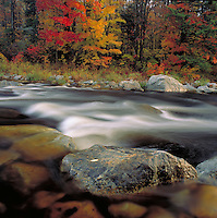 Scenic view of fall foliage along the Roaring Branch River. Bennington, Vermont.