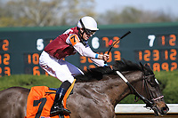 HOT SPRINGS, AR - March 18: Streamline #7 and jockey Chris Landeros just after winning the Azeri Stakes (Gr.2) at Oaklawn Park on March 18, 2017 in Hot Springs, AR. (Photo by Ciara Bowen/Eclipse Sportswire/Getty Images)