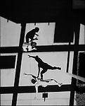 USA Olympic Preview 2004: Patricia MIRANDA, 25, Saratoga, California;  and Tela O'DONNELL, 22,  Homer, Alaska, Women's wrestling,  July 2004.<br /><br />2004 &copy; David BURNETT (CONTACT PRESS IMAGES)