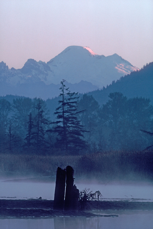 Mount Baker, Skagit River Estuary, winter, Puget Sound, Washington State, Isohis slough,.