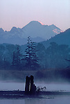 Mount Baker, Skagit River Estuary, winter, Puget Sound, Washington State, Isohis slough,.