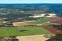Farmland, western Colorado. August 2011