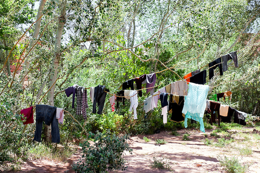 Washed cloths hanging on branches, Rose Valley, Morocco.