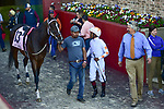 April 18, 2020:Lady Apple (13) with jockey Ricardo Santana, Jr. aboard during the Apple Blossom Handicap at Oaklawn Racing Casino Resort in Hot Springs, Arkansas on April 18, 2020. Ted McClenning/Eclipse Sportswire/CSM