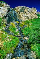 Ruby Mountains, northeast Nevada, USA