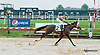 Get It On winning at Delaware Park on 8/1/13